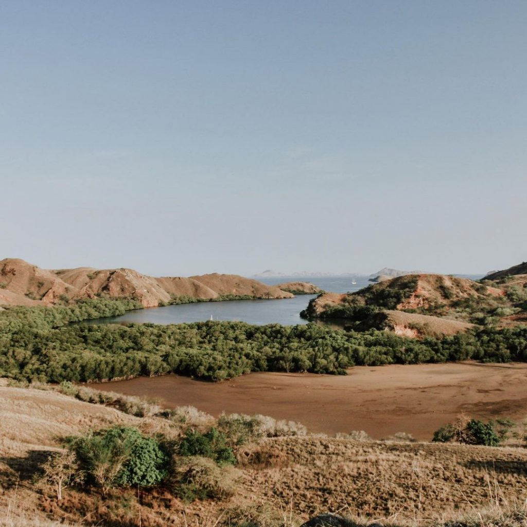 The Reality of Visiting Komodo Island: Inside the Park